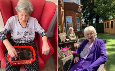 Summer activities at Lulworth House Residential Care Home