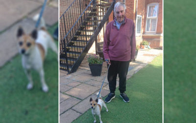 Friends reunited at Lulworth House Residential Care Home