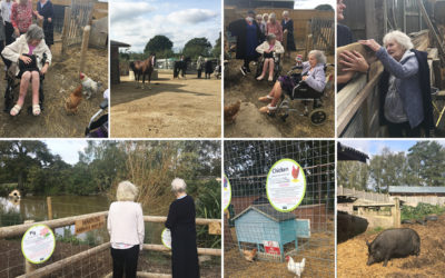 Lulworth House Residential Care Home residents visiting The Retreat Animal Rescue
